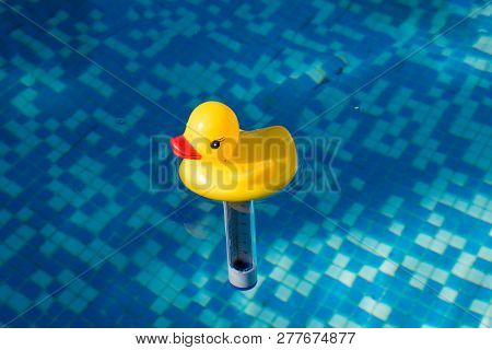 Yellow Duck Funny Thermometer In Swimming Pool
