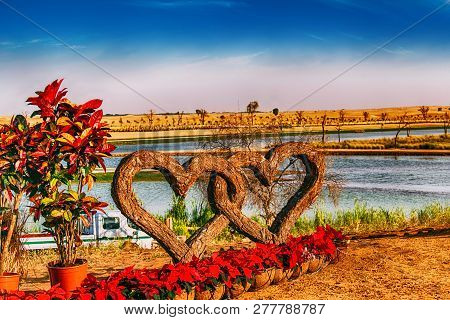 Entangled Love, Two Wooden Shaped Love Symbols Twisted Together At Dubai Love Lake