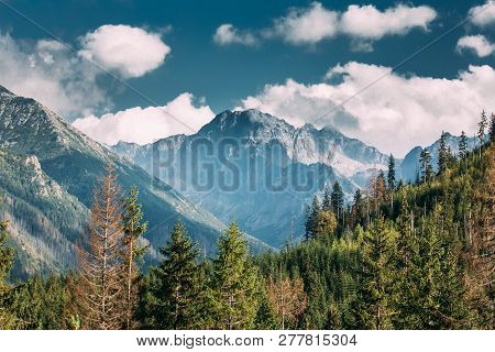 Tatra National Park, Poland. Summer Mountains And Forest Landscape. Beautiful Scenic View. Unescos W