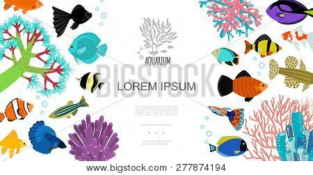 Flat Aquarium Elements Template With Colorful Fishes Water Bubbles Corals And Seaweed Vector Illustr