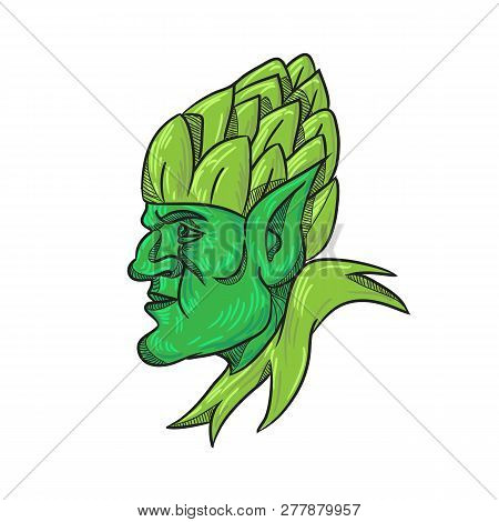 Drawing sketch style illustration of a green elf,  a human-shaped supernatural being in Germanic mythology and folklore looking to side wearing a hops hat on head on isolated white background. poster