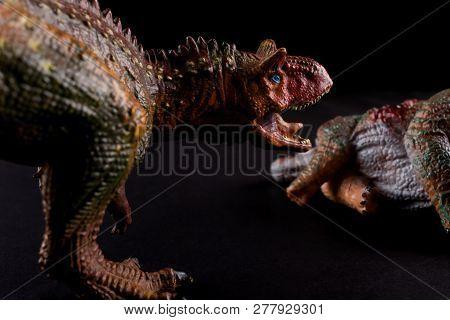 Carnotaurus In Front Of A Stegosaurus Body On Dark Background