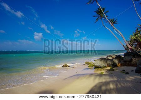 Beach View With Clear Skies And Canoes On The Shore