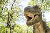 tyrannosaurus predatory dinosaur with open mouth in the park poster