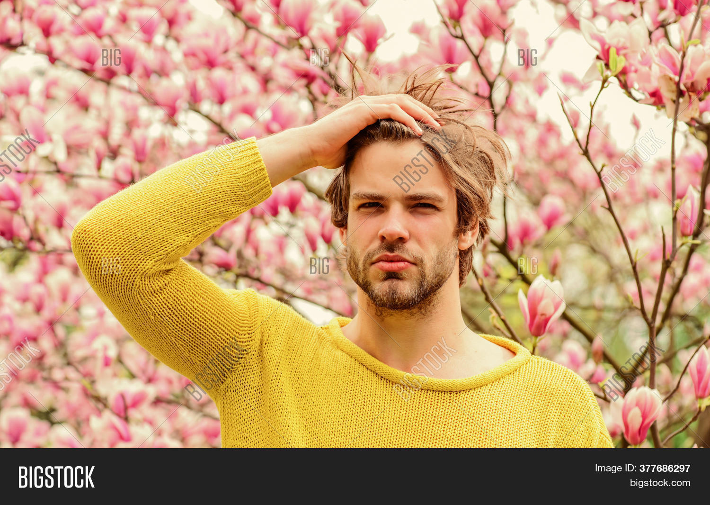 Spring Fresh Blossom Image Photo Free Trial Bigstock