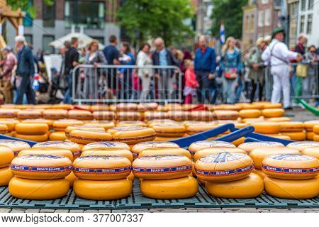 Alkmaar, North Holland / Netherlands. June 11th. 2016. Dutch Cheese Market With Many Cheeses, Old Tr