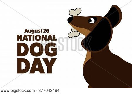 National Dog Day. August 26. Holiday Concept. Template For Background, Banner, Card, Poster With Tex