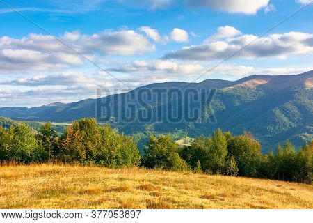Autumn Landscape In Evening Light. Trees And Grass On The Hillsside Meadow. Rural Valley And Mountai