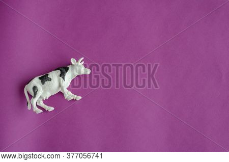 Figurine Of White Cow With Black Spots On Purple Background. Farm Products, Livestock Concept. Copy