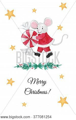 Christmas Illustration With Mouse With Christmas Candy, Flowers And Stars. Hand-drawn Watercolor Chr