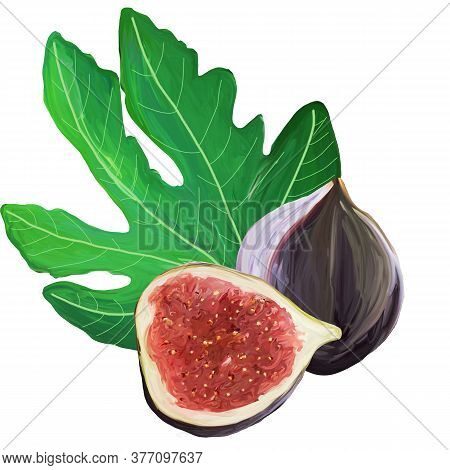 Fig Cartoon Elements Set. The Whole Exotic Fruit, Fig Leaf, Cut Figs On White Background. Purple, Re
