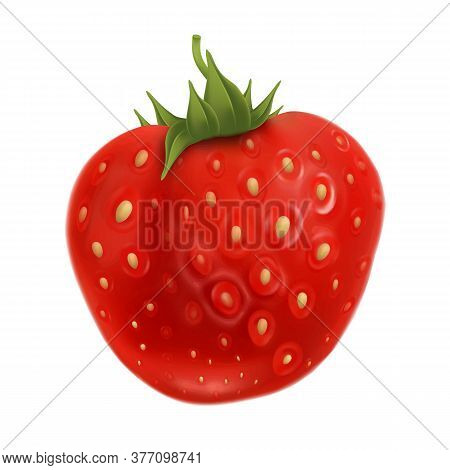 Strawberry Fruit With Green Leaf On Top Vector. Summer Harvest Aromatic And Tasty Ripe Strawberry Nu