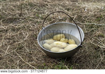 Peeled Raw Potatoes In A Pot For Cooking In Nature Under The Open Sky, Taken Close-up On Dry Grass