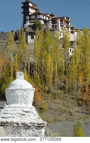 A Small White Stupa Is Seen Among Some Poplar Trees Below A Brown And White Buddhist Temple Near Leh