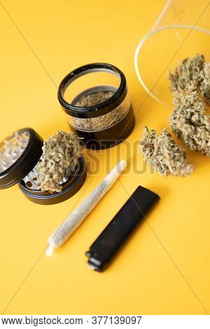 Sativa Thc Cbd. Cannabis Nature Bud. Marijuana Weed Bud And Grinder. Joint Weed. The Pot Leaves On B