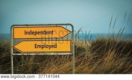 Street Sign The Direction Way To Independent Versus Employed