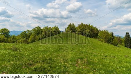 Springtime Mountain Meadow With Trees Around And Blue Sky With Clouds Near Magura Hill In Velka Fatr