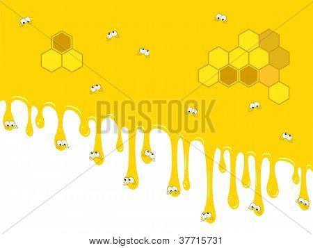 Backdrop Honey