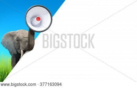 Elephant Trumpeting With A Megaphone. Advertisement Concept With Copy Space For Your Text.
