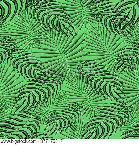 Exotic Tropic Pattern. Tropical Floral Fabric Fashion Background. Palm Leaf Textile Color Vintage Su
