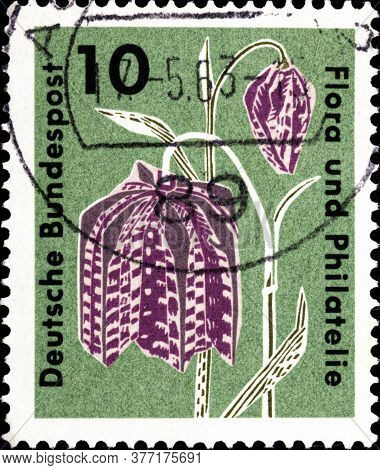 02 09 2020 Divnoe Stavropol Territory Russia Postage Stamp Germany 1963 Flora And Philately Exhibiti