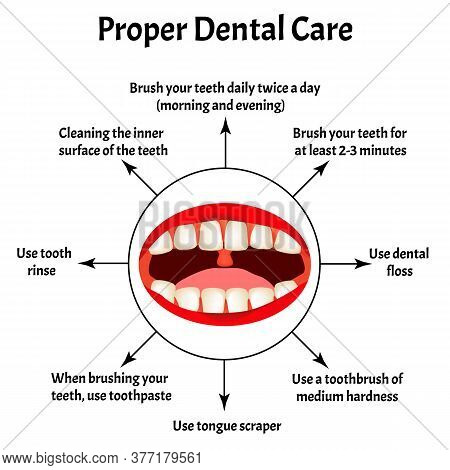 Proper Dental Care. International Dentist Day. The Structure Of The Teeth And Oral Cavity. Diseases