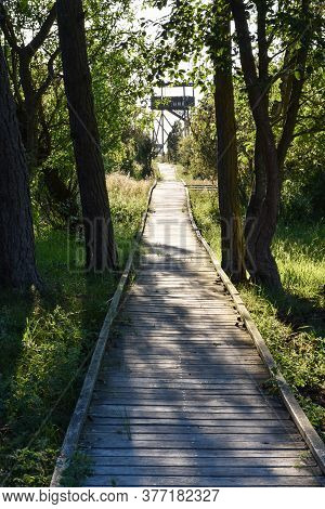 Boardwalk In The Nature Reserve By Beijershamn On The Island Oland In Sweden