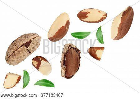 Brasil Nuts Isolated On White Background . Top View. Flat Lay