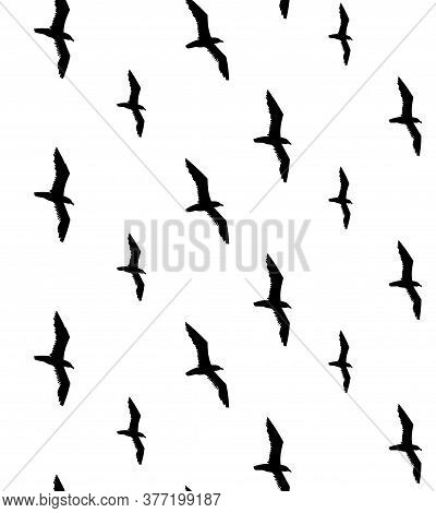Vector Seamless Pattern Of Black Seagull Birds Flock Silhouette Isolated On White Background