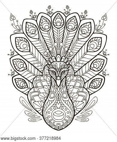 Vector Coloring Ornamental Portrait Of Peacock. Decorative Abstract Vector Contour Illustration Isol