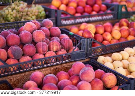 Fruit Bazaar Peaches Nectarine Grapes Apricots Ripe Juicy Lie Plastic Box Showcase. Seasonal Fruits
