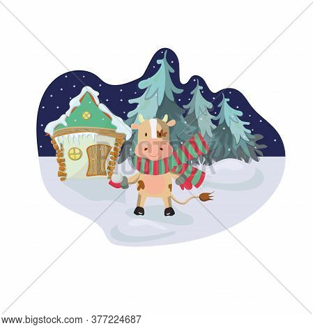 2021 New Year Greeting Card With A Bull Playing Snowballs. Scene With Spruce Forest And A House On T