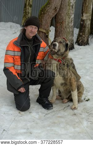 Shelter For Stray Dogs Of Large Breeds. Shelter Employee With Alabai