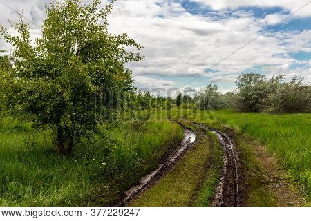 Scenic Wet After Rain Dirt Muddy Road Through Trees And Green Grass Field Meadows Against Blue Sly B