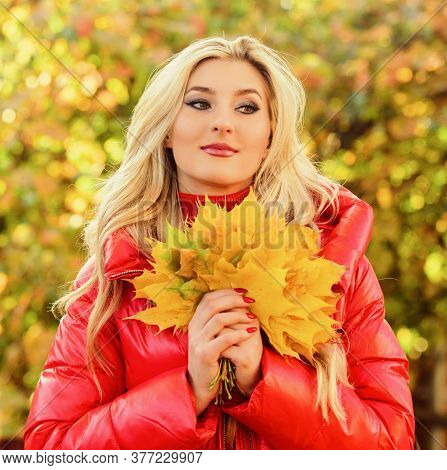 Autumnal Bouquet Concept. Girl Blonde Makeup Dreamy Face Hold Bunch Fallen Maple Yellow Leaves. Woma