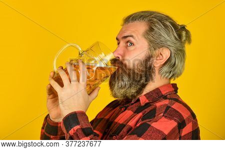 Drink Your Beer. Trying A New Beer. Brutal Hipster Drink Beer. Mature Bearded Man Hold Beer Glass. M
