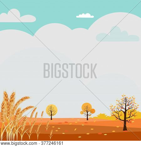Cute Cartoon Autumn Landscape With Copy Space, Vector Hello Autumn In Fram Field With Ripe Wheat, Au