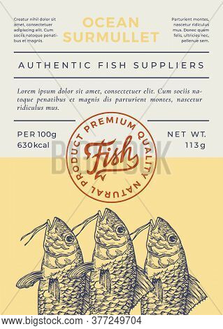 Ocean Fish Abstract Vector Packaging Design Or Label. Modern Typography Banner, Hand Drawn Surmullet