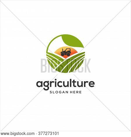 Vector Logo Design Perfectly Suitable For Agriculture, Agronomy, Wheat Farm, Rural Country Farming F