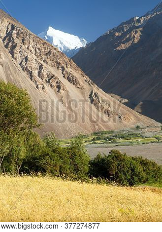 Cereal Field In Wakhan Valley, Hindukush And Pamir Mountains, Gorno-badakhshan Region, Tajikistan An