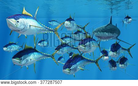 Tiger Shark After Tuna 3d Illustration - Yellowfin Tuna Swim Like Torpedoes To Get Away From A Tiger
