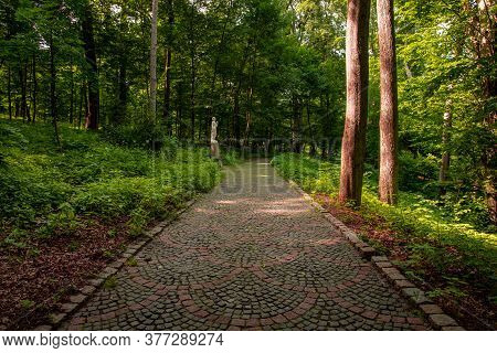 Summer Park Outdoor Landscape Scenic View Nature Photography With Stone Paved Road For Walking And P