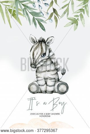 Watercolor Cartoon Cute Baby Zebra With Flowers Frame Background. Nursery African Illustration. Bohe