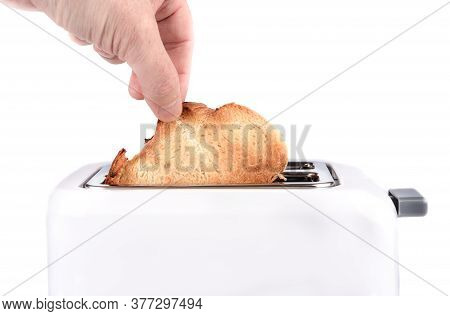 Human Hand Takes Out Toasted Bread Toast From A Toaster. Toaster With Ready-made Toasts And A Man Ha