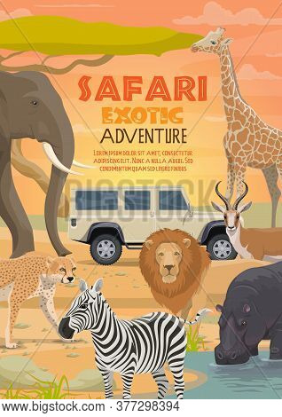 African Safari, Vector Hunting Sport And Animals. Lion, Elephant And Antelope, Hippo, Giraffe And Ze