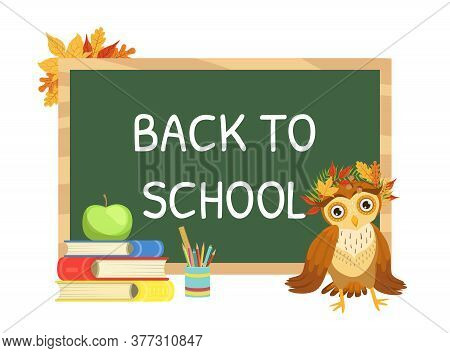 Back To School Banner Template With Cute Wise Owl Bird Character Cartoon Vector Illustration
