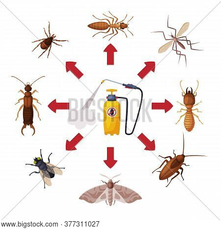 Pest Control Service, Pressure Sprayer Of Chemical Insecticide And Harmful Insects Vector Illustrati