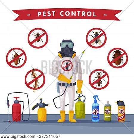 Pest Control Service Banner Template, Detecting, Exterminating And Protecting Vector Illustration