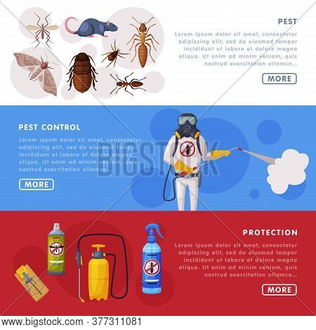 Pest Control Service Horizontal Banners Set, Detecting, Exterminating And Protecting Landing Page Te
