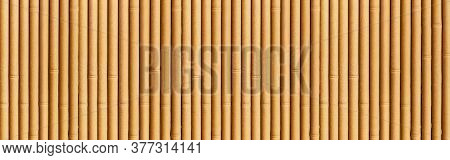 Panorama Of Close - Up Of Bamboo Wall Or Bamboo Fence Texture. Old Brown Tone Natural Bamboo Fence T